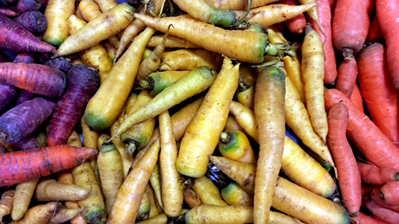 carrots-for-blog-small