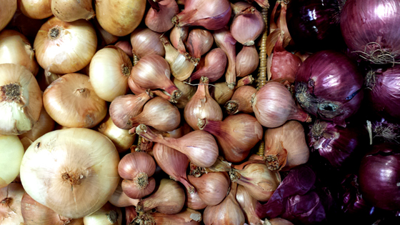 onions-for-blog