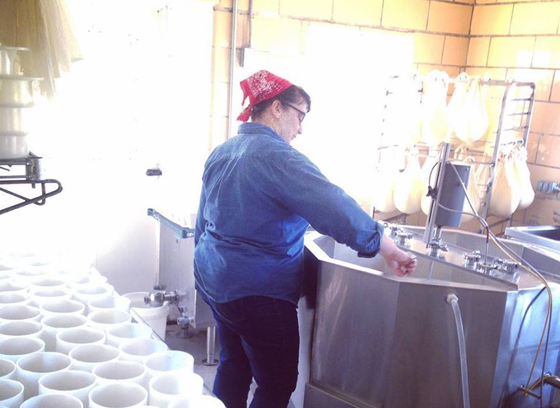 alex-cheesemaking-for-blog
