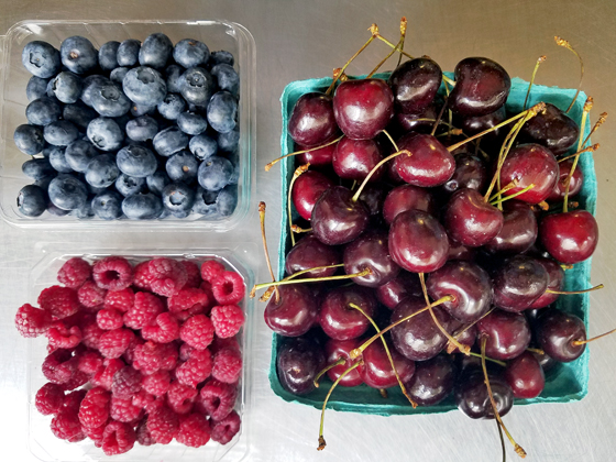 berries-for-blog