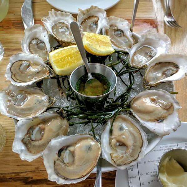 oysters_blog.jpg