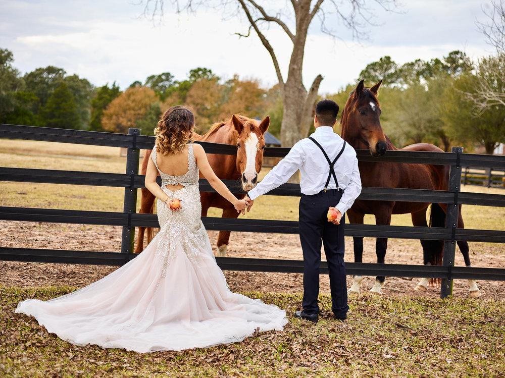 Sandlewood Manor, Houston's Exclusive Wedding and Events Venue