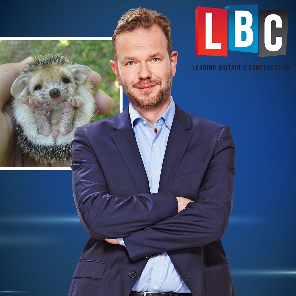 james o brien hedgehog.jpg