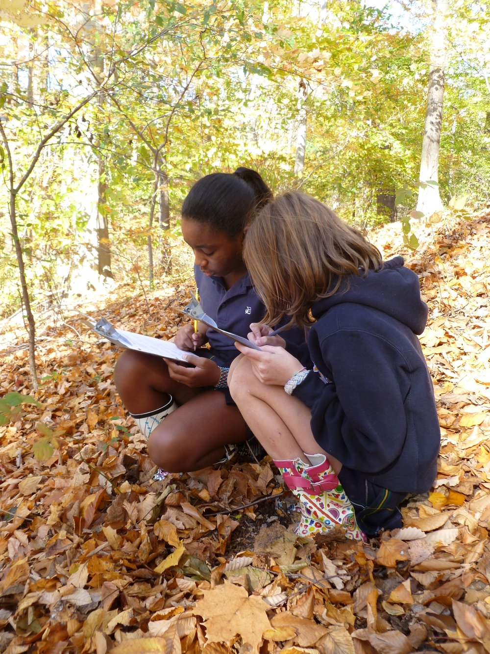 Middle School Students use observation and drawing skills in an outdoor science class.