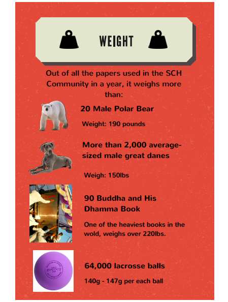 An infographic made by SCH's seventh grade math    students to inform others about paper waste.