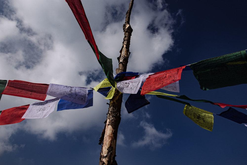 IMS_Nepal_SQ-7.jpg