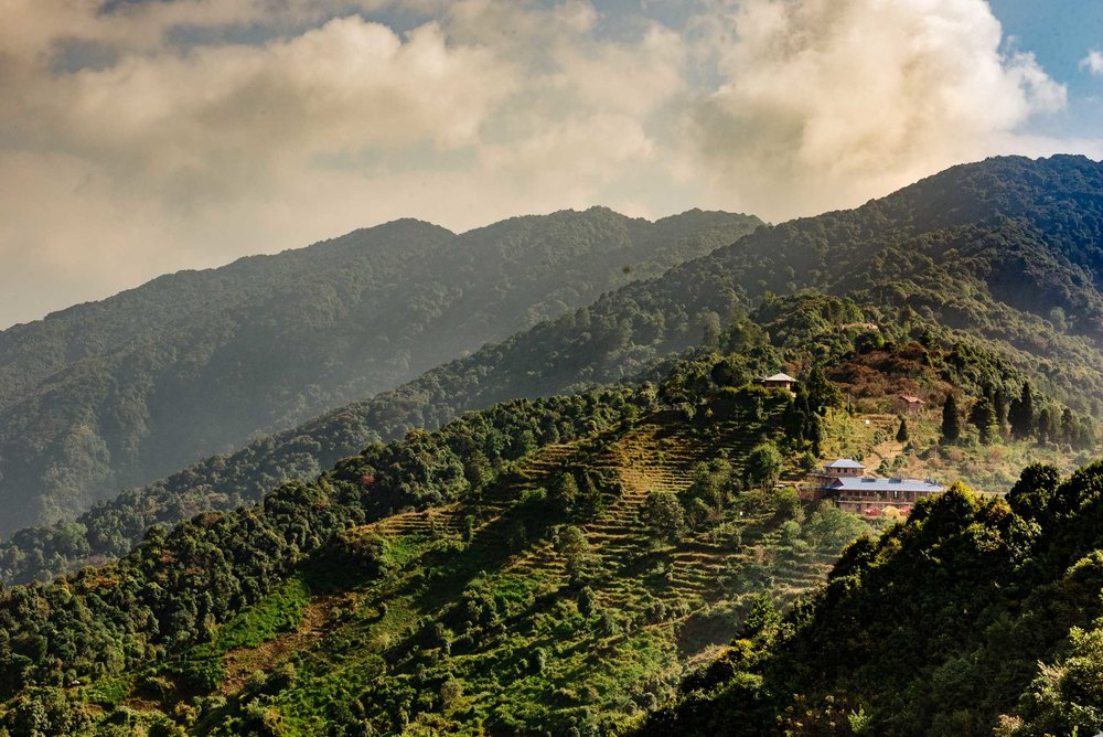 IMS_Nepal_SQ-5.jpg