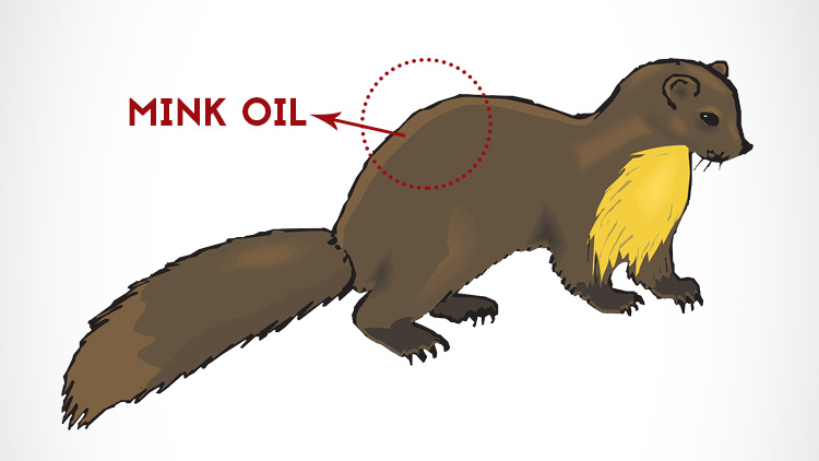 Mink oil, a natural leather preserver, comes from the pelts of minks.