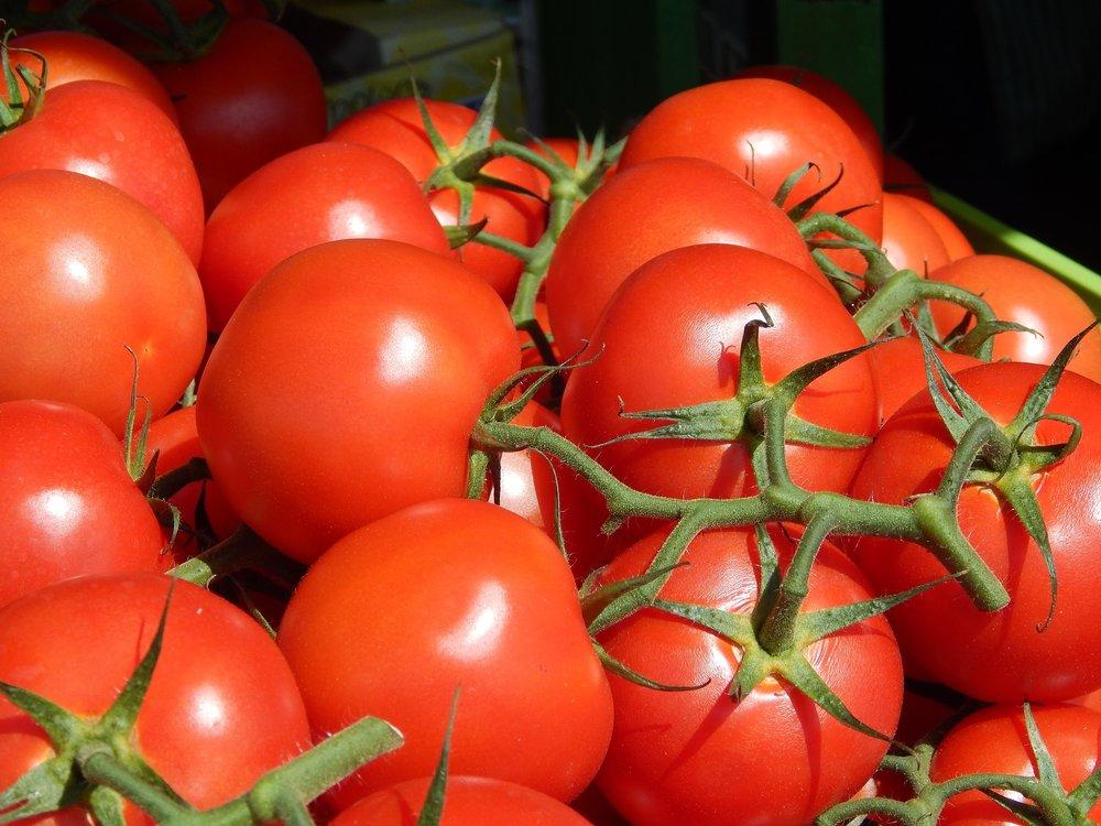 tomatoes-905632_1920.jpg