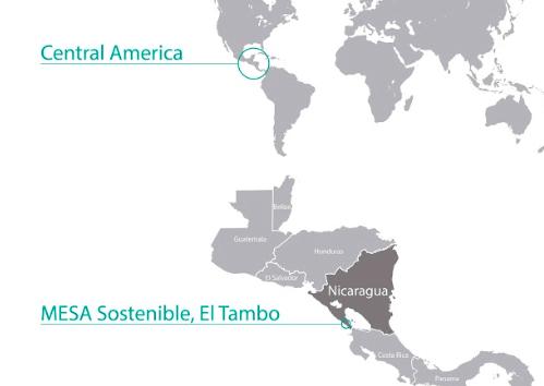 MESA Sostenible, Nicaragua