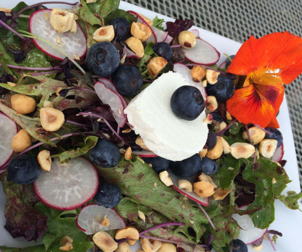 Daily Menu: Seasonal Salad This lovely mix celebrates summer on the decK. Alaska Natural Organic greens tossed with peppery radish slices, juicy blueberries and toasted hazelnuts in a blueberry-shallot vinaigrette. Fresh goat cheese and a nasturtium complete the party.