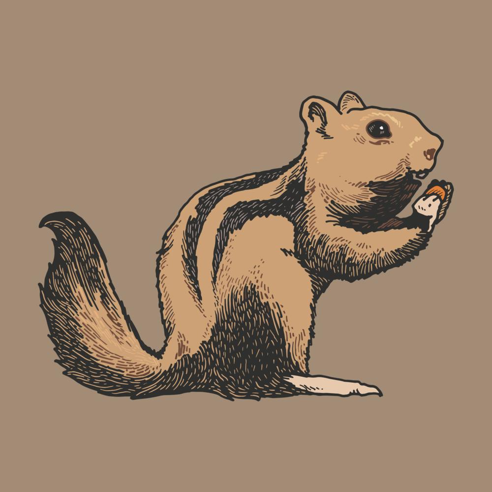 Chipmunk 1.png