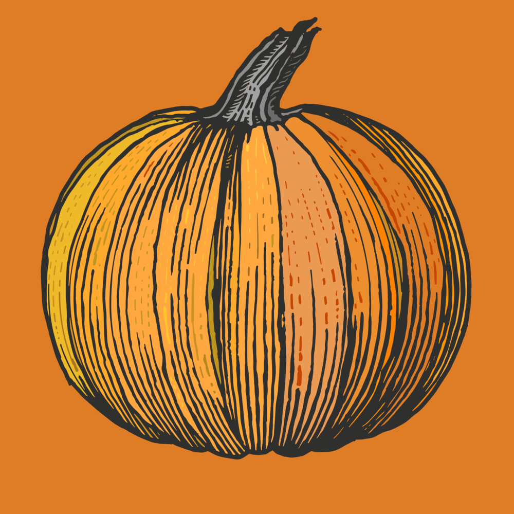 Pumpkin 3.png