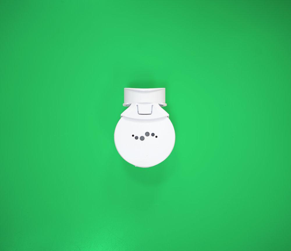 Mint Model Shot_Green Background.jpg
