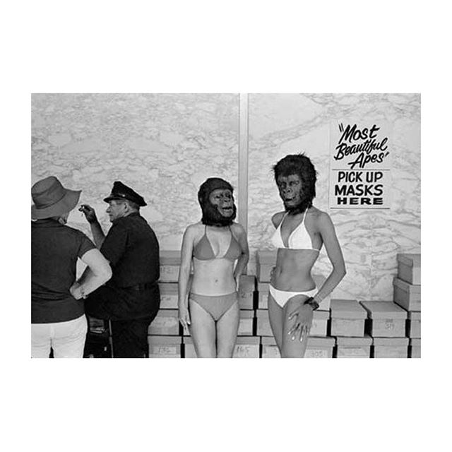 Weekend disguises in effect #foundersfriday #oddobodies #mostbeautifulapes #leefriedlander