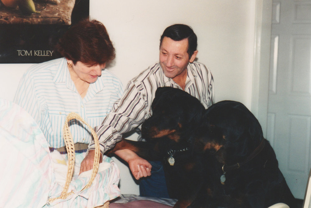 PS. I find this photo soooo funny- Mason + Gehrig meeting baby me for the first time, with my grandparents AKA two big ass rottweilers meeting a newborn baby! I wonder what happened after this?!