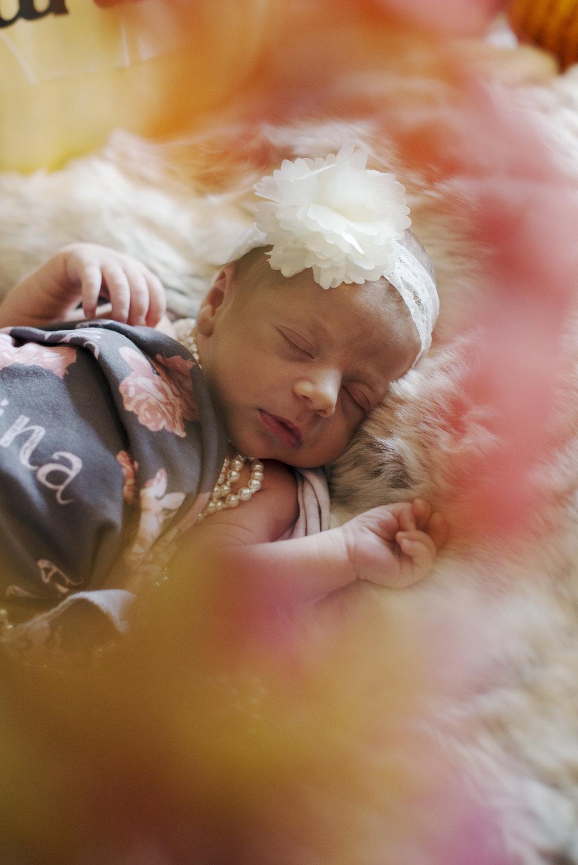 RosewoodWeddingPhotos-Baby-Studio-NewbornBaby-Styled-Rings-Tutu-Newmarket-NewmarketFamilyPhotographer