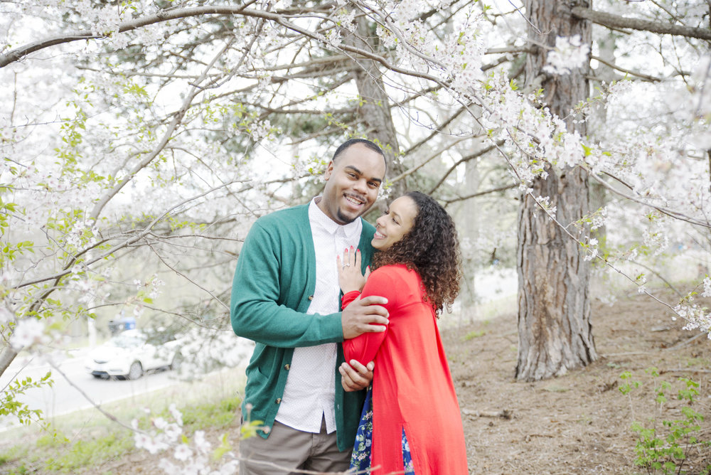 RosewoodWeddingPhotos-HighPark-CherryBlossoms-POC-Engagement-TorontoEngagement