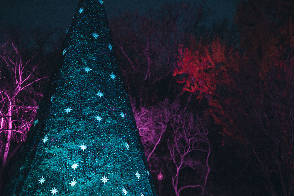 National Christmas Tree Lighting - National Park Foundation