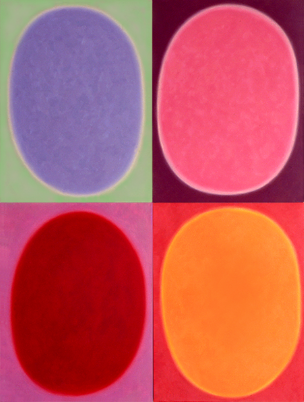 "Silent 14, oil on canvas, 2003, series of 4 panels W18"" x H24"" each, total format W36"" x H48"". Private collection."