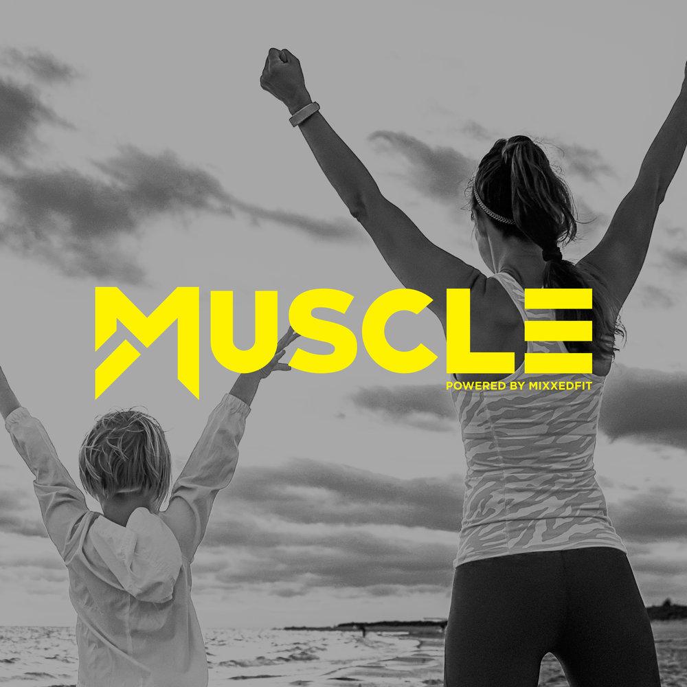 Muscle 20.jpg