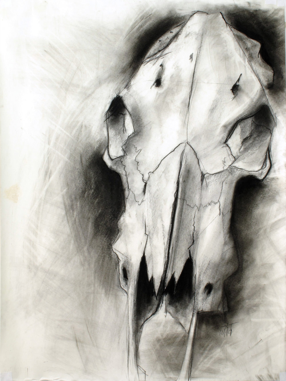 "18 x 24"" charcoal on paper 16 year-old me in my Core Drawing class. We were being introduced to different forms of drawing and encouraged to use different techniques constantly. This one included smudging charcoal and lifting out with a kneaded eraser. I even dated it, 10/4/91."