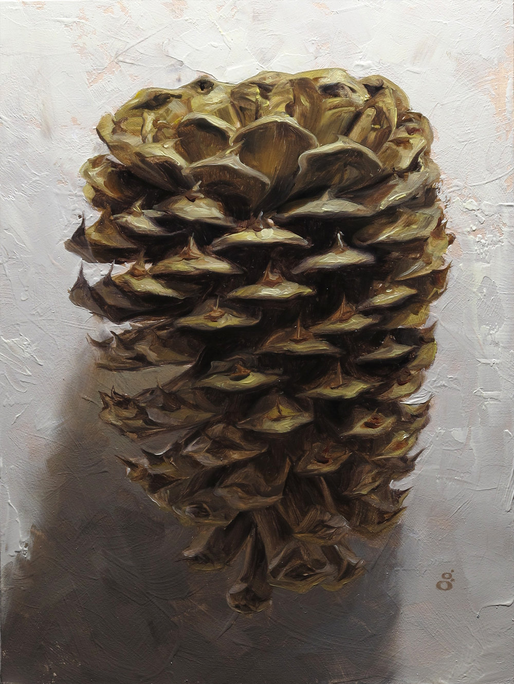 """Pine Cone"" 6x8"" oil on panel Sold"