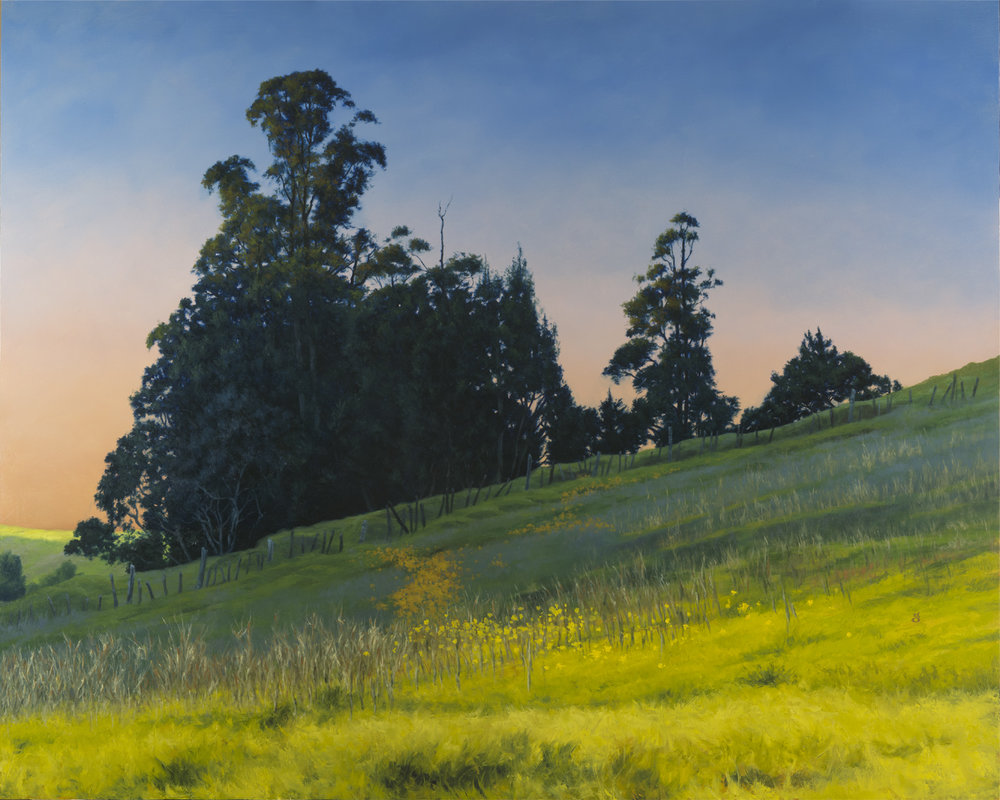 "Petaluma Evening 24x30"" oil on panel Original art available"