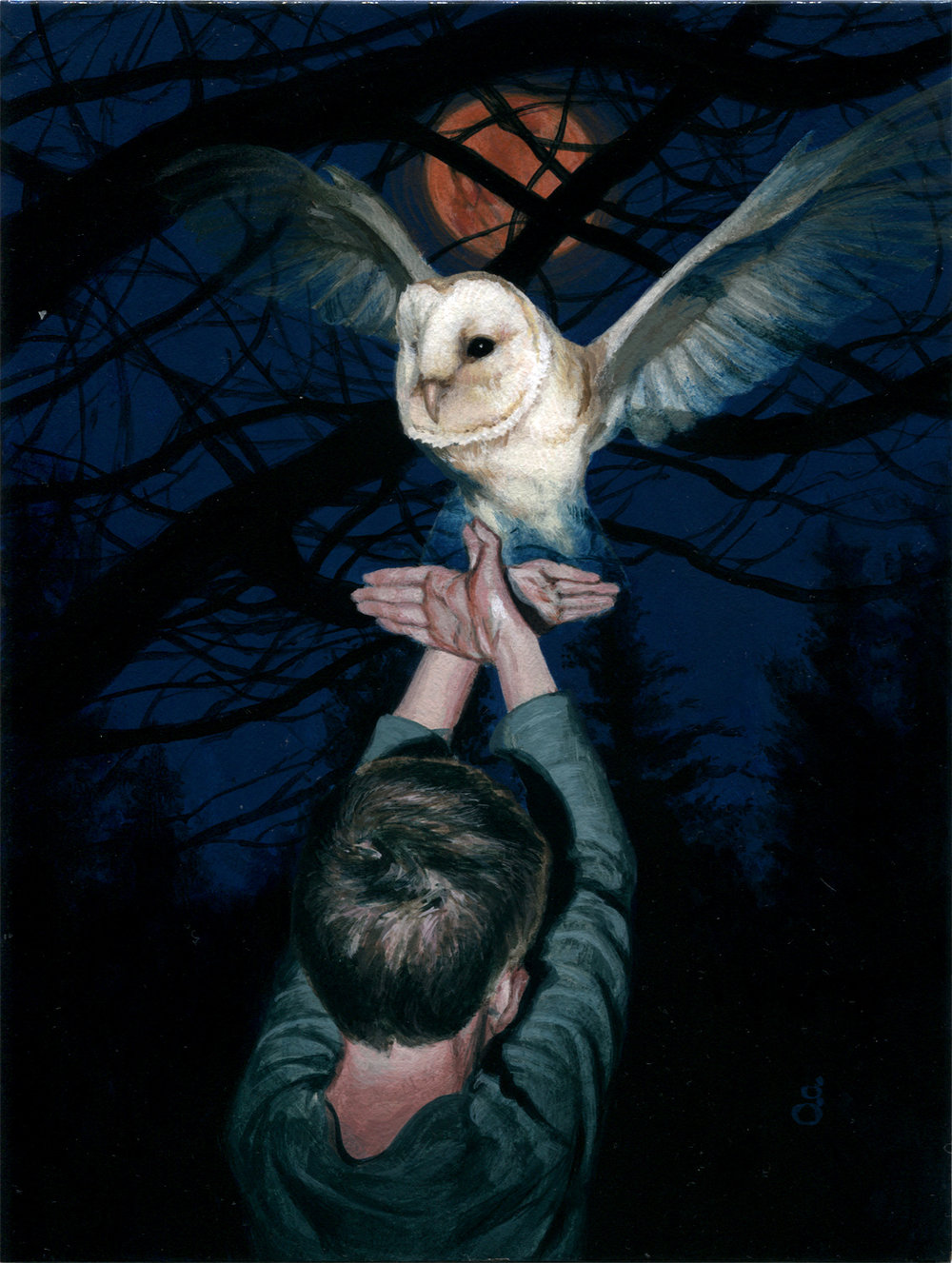 "White Owl 6x8"" acrylic on illustration board Original sold"