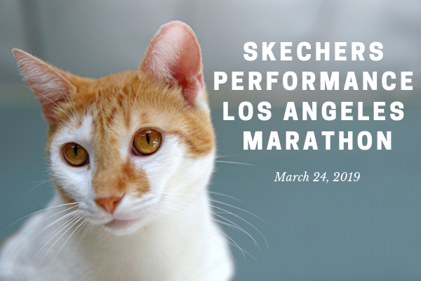 Skechers Performance Los Angeles Marathon.png