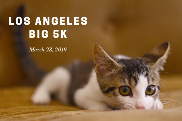 LA Big 5K (1).png