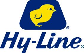 HY-LINE INTERNATIONAL -