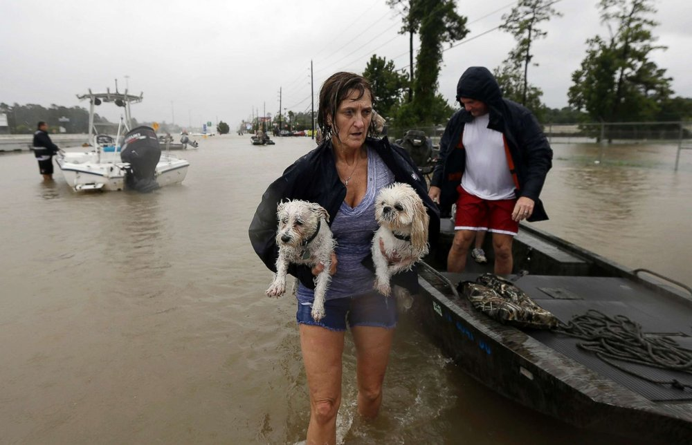 8/29/17 - In wake of Hurricane Harvey and it's devastating impact I would like to remind us all to remember the many pets that are often forgotten in the panic surrounding natural disasters. For the next two weeks I will offer $50 off of any date with a donation of $20 or more to any organization helping the animals impacted by Harvey.https://www.aspca.org/ways-to-givehttp://www.houstonspca.org/