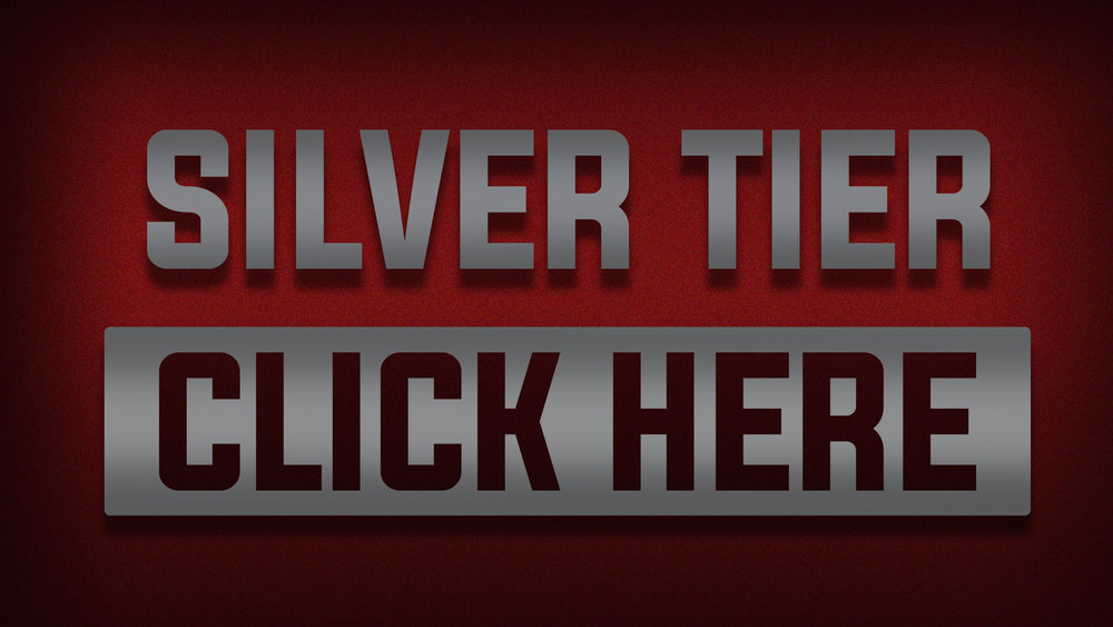 SILVER TIER - One-Time Payment Of $144.00THIS PLAN INCLUDES:Everything From The BRONZE TIERPLUS+One Physical Gridiron Champions Wall Poster Early Beta AccessEstimated Physical & Digital Reward Delivery:Rewards will be processed for delivery once we have reached our funding goal.
