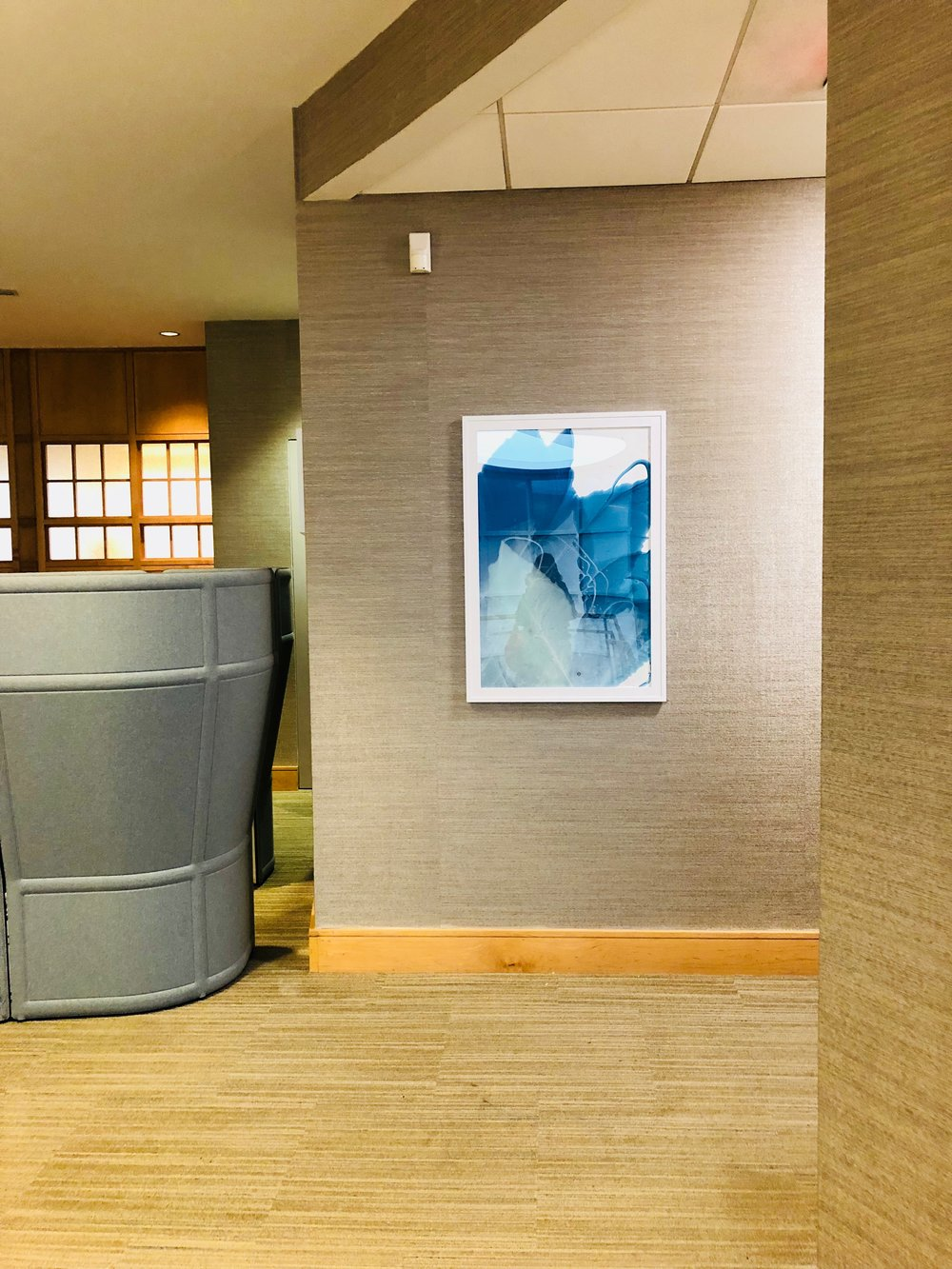 Installation View:Marina Dunbar,  Blooming Blue II,  2017
