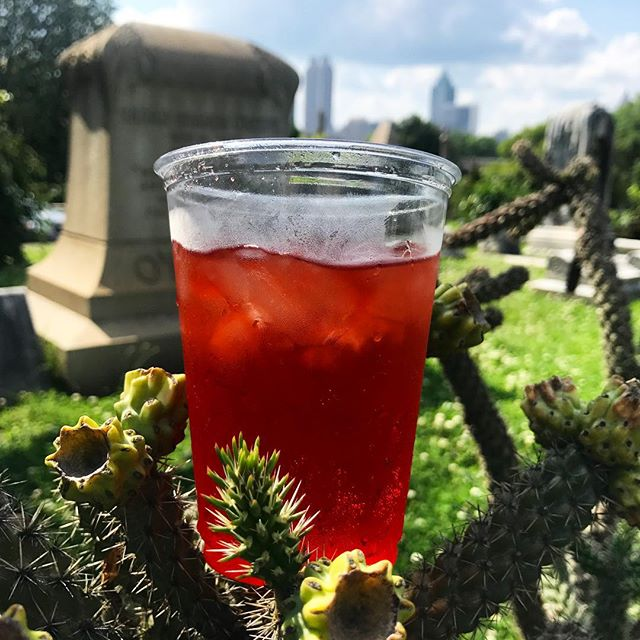 Come grab some of our GA fresh Strawberry soda at #goldenhour @oaklandcemetery and check out some cool art meant to be viewed specifically at sunrise or sunset. #georgiafarms #oldknowbevco #oldknowsoda #strawberry #weloveatl #supportlocal #artistcommunity #oaklandcemetery