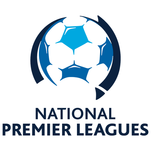 NPL 520x520 dec 2017 PS4 Logo.png