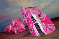 Kalee and I had the cadillacs painted  camo pink to signify the fight!