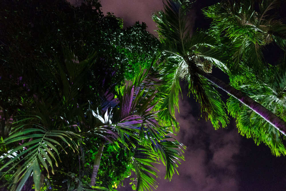 puertorico_february_azureewiitala-50.jpg