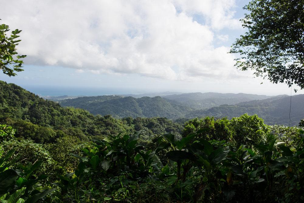 puertorico_february_azureewiitala-112.jpg