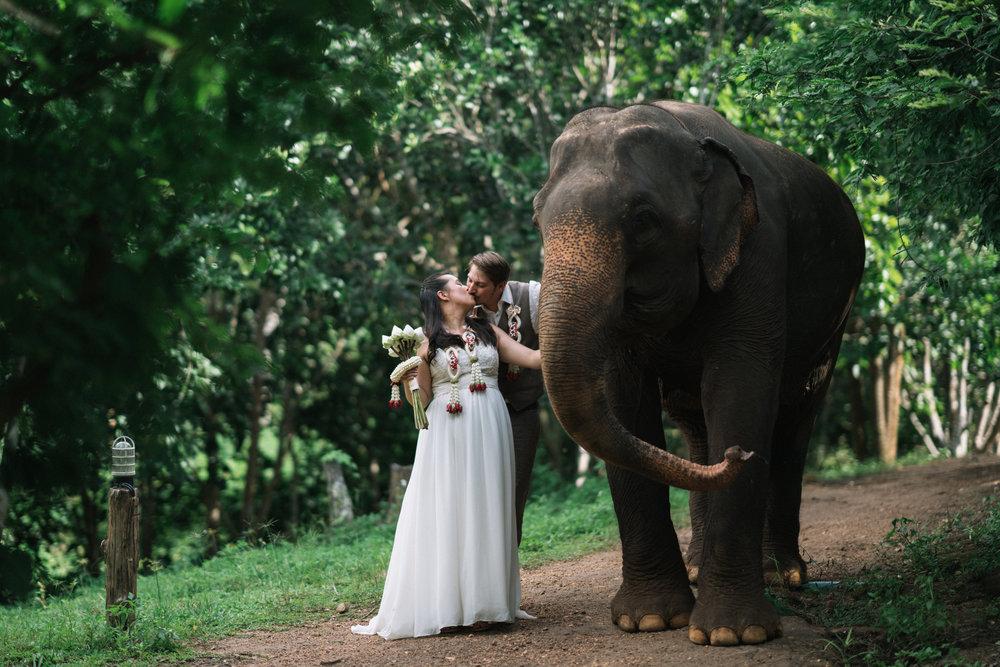 Thai style wedding photography with elephant by Chiang Mai photographer Sean Dalton