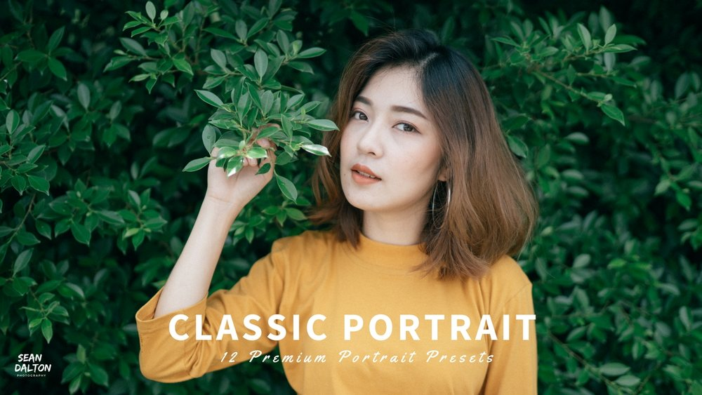 classic portrait presets.jpg