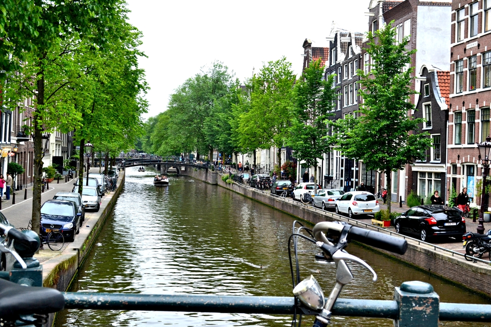 amsterdamed8