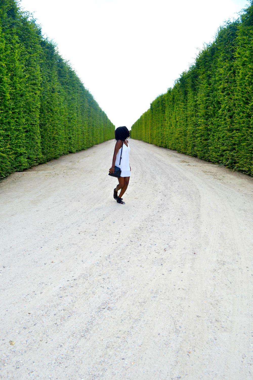 gardened4