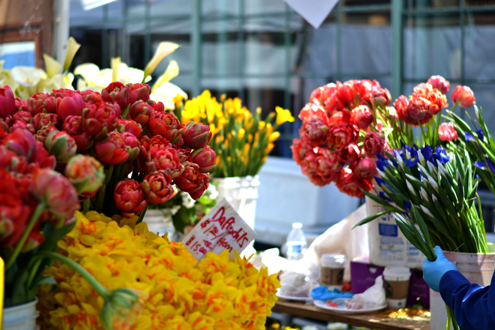 The most beautiful flowers at Pike's place
