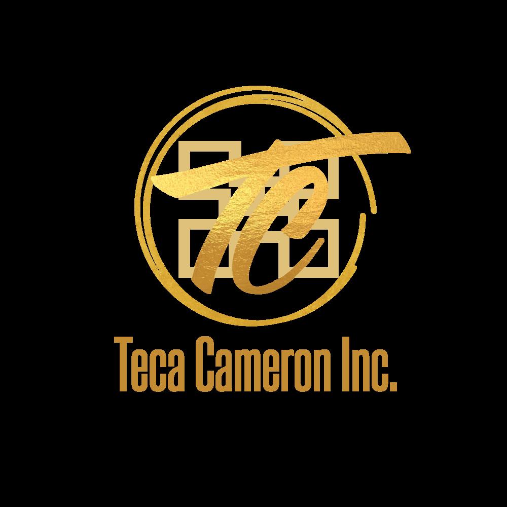 teca_logo_v3.png