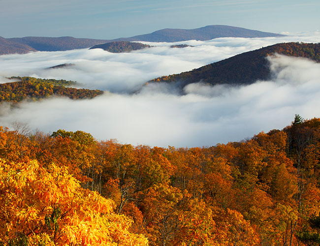 Shenandoah National Park - Luray, VA