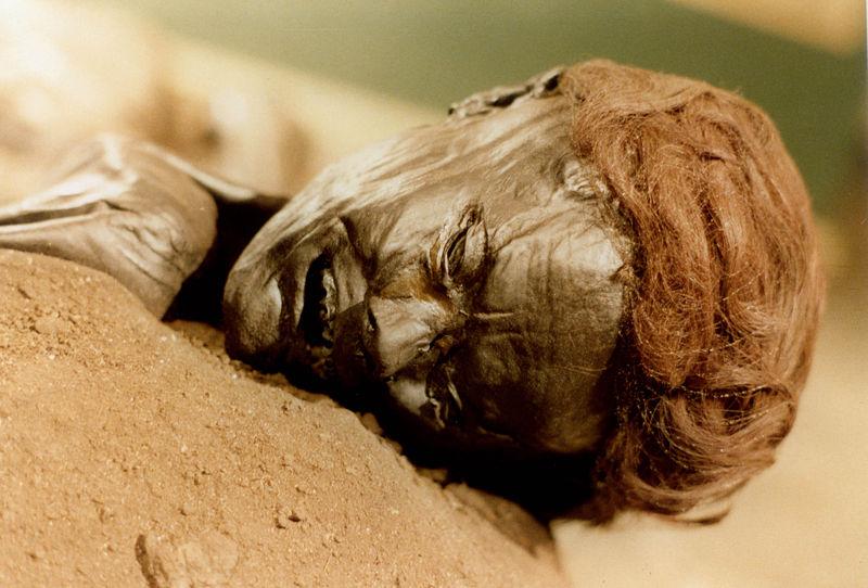 Grauballiensis homo