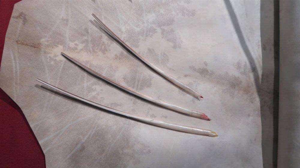 Vellum and pens, photo Amelie Rosengren, Latinitium.com.jpg