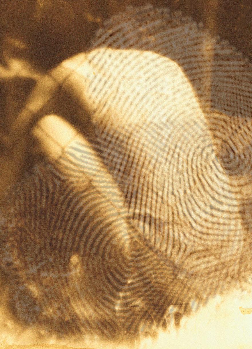 rahel_mueller_fingerprints2010_(03).JPG